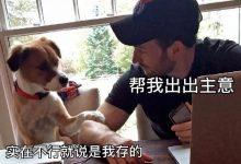 """胡宾果自封""""杭州女明星"""",却是在线遛鸟的高配""""小受受""""-蜗牛扑克官方-GG扑克"""